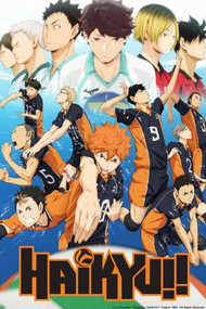«Волейбол!!» / Сезон 1 / «Haikyuu!!» TV-1